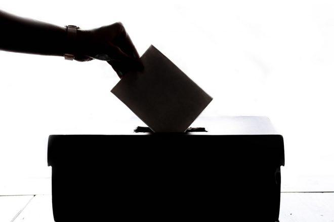 Избори през 2019 година