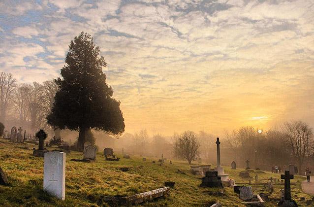 Ден на мъртвите